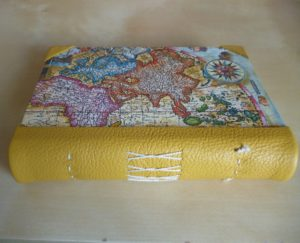Yellow leather spine